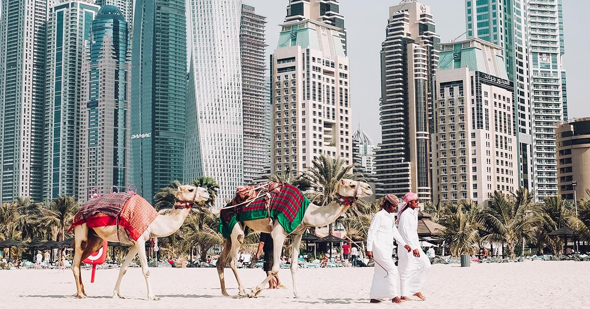 Genieße am niedrigsten Preis super günstig im vergleich zu große Auswahl 20 Crypto Companies in Dubai You Should Get to Know